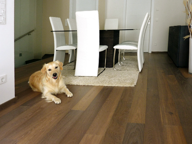 sol-et-style-projet-categorie-maisons-style-classique-parquet-brun-chien-chaises-blanches