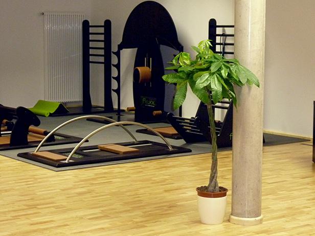 sol-et-style-projet-categorie-espaces-publics-salle-sport-plante-machines-noires