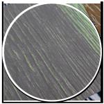 sol-style-essence-style-design-parquet-propose-bois-ton-fonce-blanc-texture-lignes-vertes