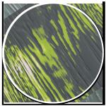 sol-style-essence-style-design-parquet-propose-bois-ton-fonce-blanc-texture-lignes-vertes-blanches